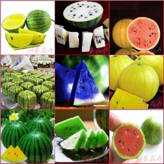 Coloured watermelon